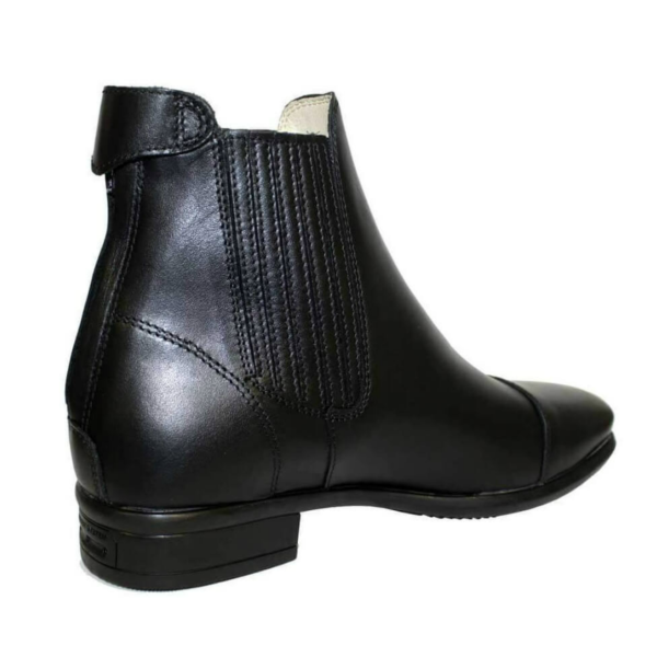 Tattini Boots - Collie Back Right Side - Half Boots - Premium Italian English Dressage Boots