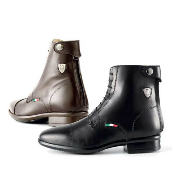 Tattini Equestrian Half Boots - Black and Brown Beagle