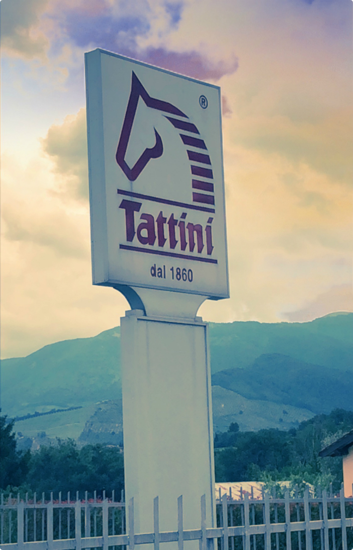 Tattini Boots Sign in Spoleto, Italy - Since 1860 - Image with Filter