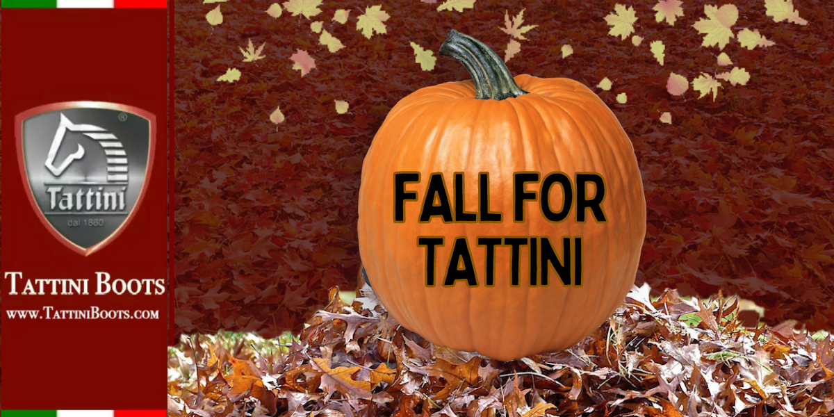 Tattini Boots Blog Fall for Tattini Italian English Dressage Riding Boot